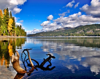 Huckleberry Cove, Payette Lake, Idaho - Photo printed full-frame on 8x10