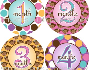 Baby Month Stickers Plus FREE Gift Girl Milestone Stickers Monkey Pink Brown Dots Baby Shower PRECUT Baby Age Monthly Stickers Photo Prop