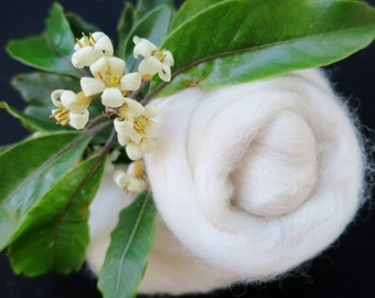 Ecru Merino Wool Roving by the Pound, White Roving, Ecru felting wool, ecru nuno felting wool, ecru needle felting wool, ecru spinning fiber