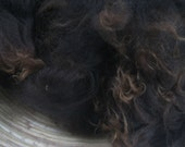 Top quality washed alpaca, from Spring Farm, Sussex 100gms Black with brown tips