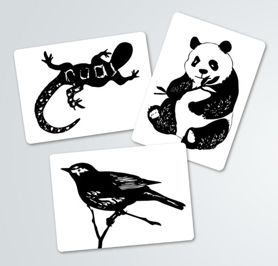 Black and white contrast animal art cards baby shower for Miroir noir review