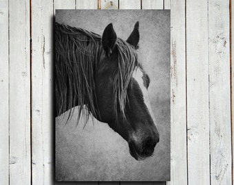Forelock - 16x24 canvas - Horse photography - Black and white horse photography - Horse art - Horse decor - Horse head decor - Horse
