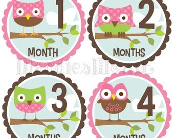 Monthly Baby Girl Stickers, Milestone Stickers, Baby Month Stickers, Monthly Bodysuit Sticker, Monthly Stickers Pink Brown Owls (Ali)