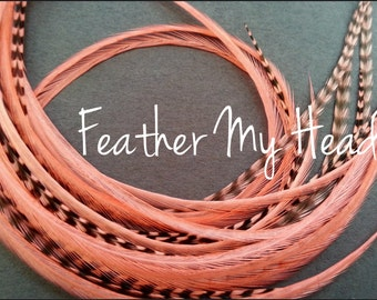 Whiting Grizzly Feather Extension Saddle Hackle Extra Long Hair Feathers 9-12 inches Soft Coral