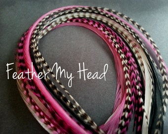16 Long Feather Hair Extensions, 9-12 inches, New For 2013 Pink Panther, Whiting Grizzly Saddle Hackle