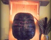 Barnwood and Turtle Shell Lighted Wall Sconce or Shelf