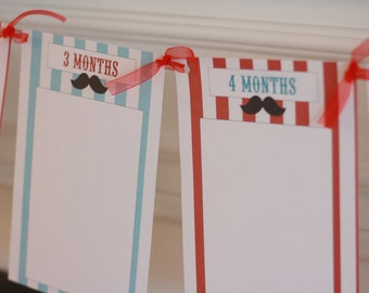 Photo Banner - 1st Year - Great for 1st Birthday Parties, Showers and More - Can Match Any Theme in My Shop - Free Ship Over 65.00
