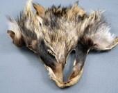 Arctic Store® RACCOON Face Totem Fur Scraps Fur Supplies RF2513 Arktika Russia
