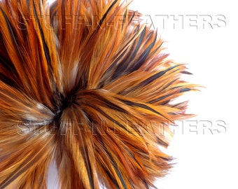 Wholesale / bulk feathers - rooster hackle feathers Natural Furnace brown for millinery, crafts, jewelry / strung 10 in (25 cm) / FB10-4