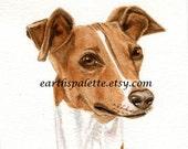 Greyhound, dog painting, 5x8 original watercolor painting, dog, portrait, italian greyhound, earthspalette