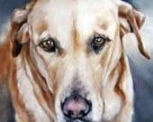 Custom Pet Portraits, Oil Painting, Pet Portrait, Portrait Commission, Animal Portrait, Dog Portrait 8x10
