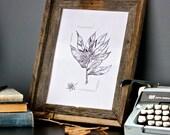 original black and white ink drawing rhododendron sketch. floral. botanical. detailed. imagination.
