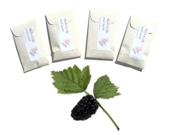 Scented Sachets Black Raspberry Vanilla Type Mini Envelope Seed Packet Favors Personalized Wedding Favors Baby Shower Prizes