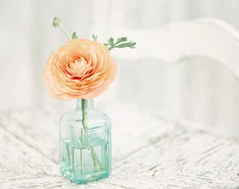 Flower Photography - Orange Ranunculus Flowers - Flowers - French - Nature - Fine Art Photography Print - Orange Teal Blue White Home Decor