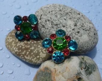 Blue and Pink rhinestone screwed back clip earrings. (C101)
