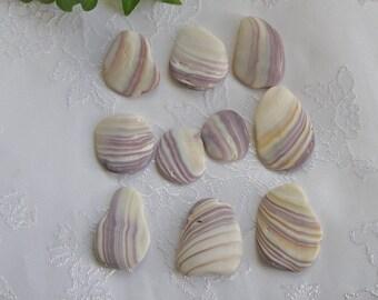 Wampum Shell Beads Crafts Mosaics