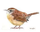 """Art print 5"""" x 7"""" of an original watercolor - A wren, Wren painting, Small gift idea, Backyard bird, Home decoration idea"""