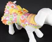 SPRING:  Hello Spring DOG DRESS