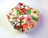 Apple Blossom One Size Pocket Diaper