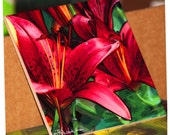 "Ceramic Tile or Coaster - Red Asian Lily 6"" x 6"""