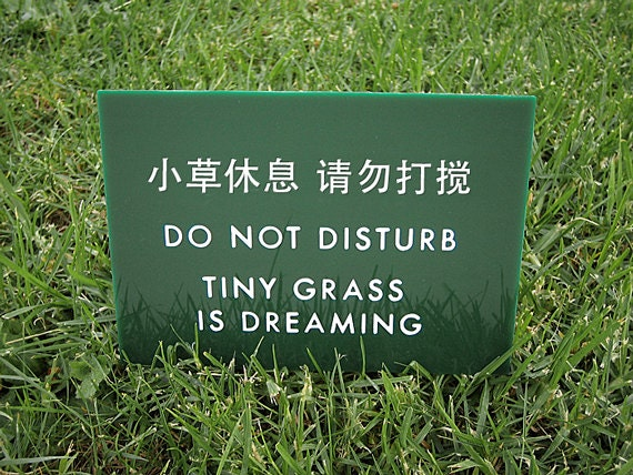 Funny Sign. Cute Lawn Sign. Keep off the Grass Sign. Yard Sign. Chinglish Sign. Tiny Grass is Dreaming