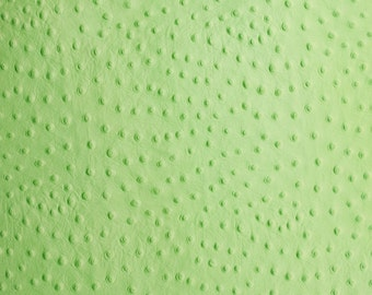Patte Green Ostrich Embossed Cowhide Leather Pre-Cut
