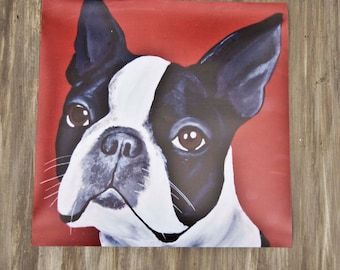Boston Terrier/Print