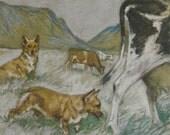 1947 CORGI dog Vintage signed original Vernon Stokes mounted dog bookplate print Unique gift
