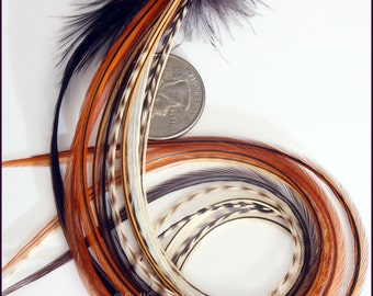 Extra Long Wide Feather Hair Extension Diy Kit Earthy Accessories for Hair Auburn Brown Black Real Feathers Bonded at Tip