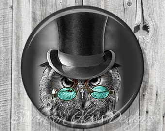 Pocket Mirror - Steampunk Owl - Teal Black - Photo Mirror - Compact Mirror Altered Art Image - Gift under 5 - A28