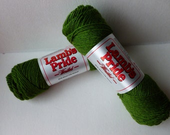 Yarn Sale  - Kiwi Lamb's Pride Worsted by Brown Sheep Company