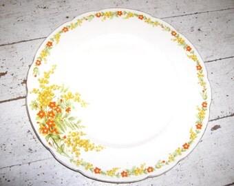 Tams Ware Plate B
