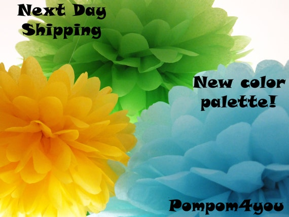 30 Tissue Paper Pom Poms and 10 FREE MINI Pom poms - Next Day Shipping