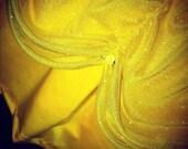 Yellow Princess Running Costume