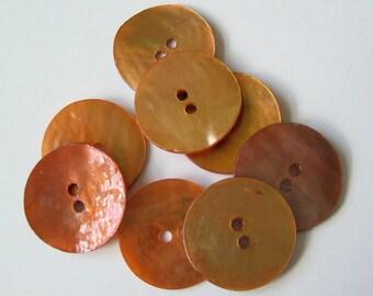 Shell buttons orange 10 pcs