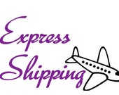 Express shipping for Europe