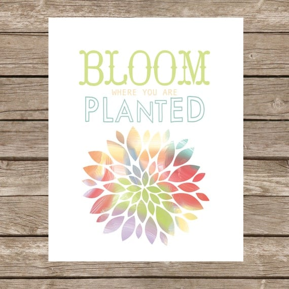 Bloom Where You Are Planted, 8x10 Digital Print Art