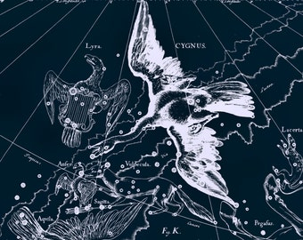 Vintage print, Stars, Astronomy, Constellation of the Cygnus, 82
