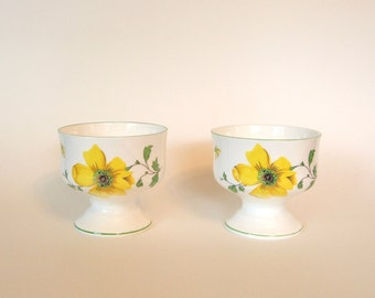 Vintage Royal Victoria Fine Bone China Footed Dessert Bowls - Set of 2 - England