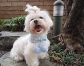 Dog bandana Peter Pan collar with white pom pom Small dog reversible neckwear blue check gingham lace print & blue floral fleece (SM -SL)