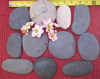 20% Off Sale***25 Large Beach Stones, Flat Oval, Signing Stones, Wedding Stones, Wedding Guest Book, Wishing Stones, Craft Supplies