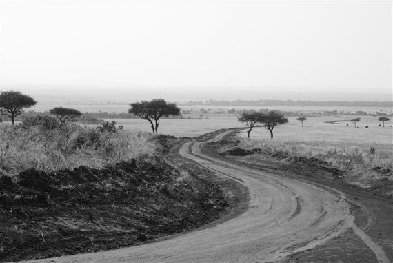 Game Drive // Nature Landscape Black and White Photography // Safari Kenya //  Dusty Road trip // art print