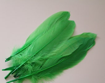 Light Green Goose Nagoire Feathers / 20 Loose Feathers