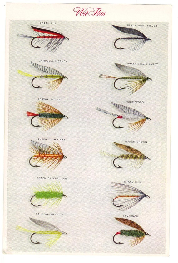 Set Trout Flies Fly Fishing Wet Flies Two Prints 02 By