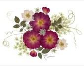 Set of 6 Pressed Flower Cards - Roses - Notecards - #083
