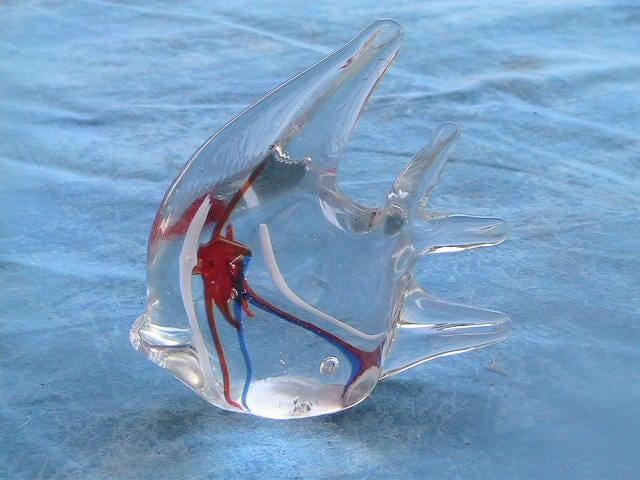 Blown glass angel fish - photo#25