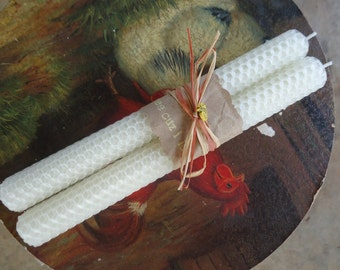 Hand rolled beeswax taper candles