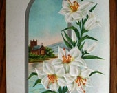 vintage POSTCARDS ...  EASTER GREETINGS lily glass stamped 1915...