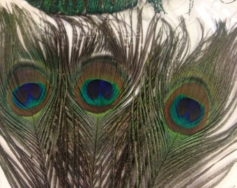 Natural Peacock Eye Feathers