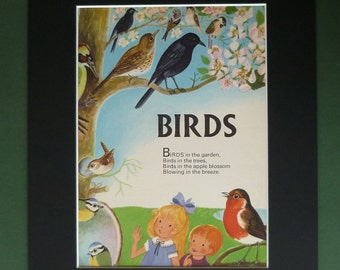 Vintage Children's Bird Print & Poem - Robin Red Breast - Blue Tits - Woodpecker - Cherry Blossom Tree - Ornithology - Matted Picture